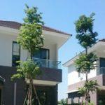 Thi công nội thất biệt thự Mega Village Quận 9